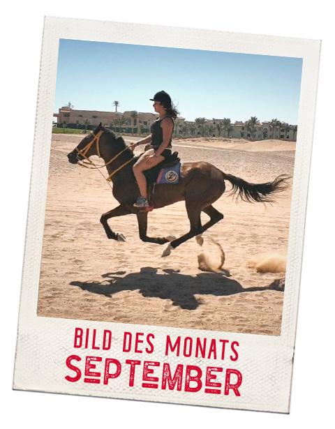 TEASER_STARTSEITE_Bild-des-Monats_September